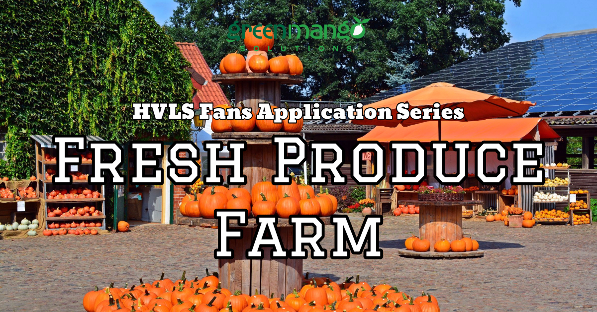 fresh produce farm pumpkin