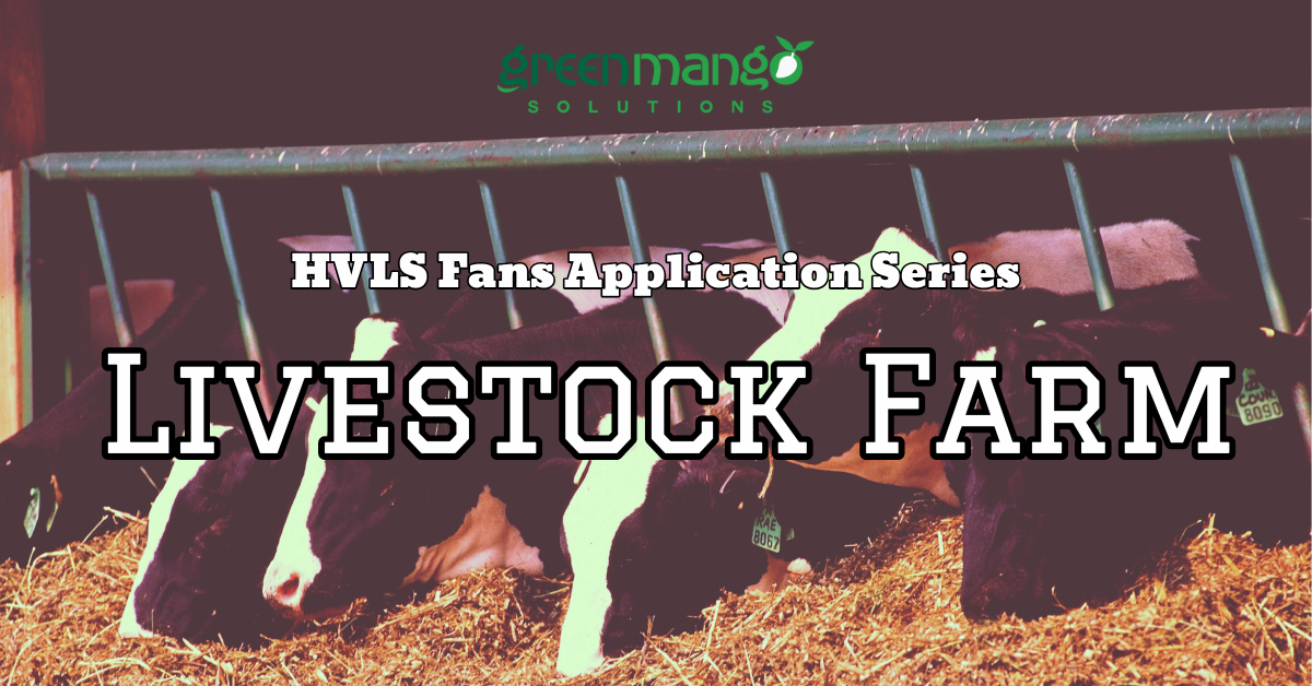 HVLS Fans: Livestock Farm Best's Friend – Green Mango