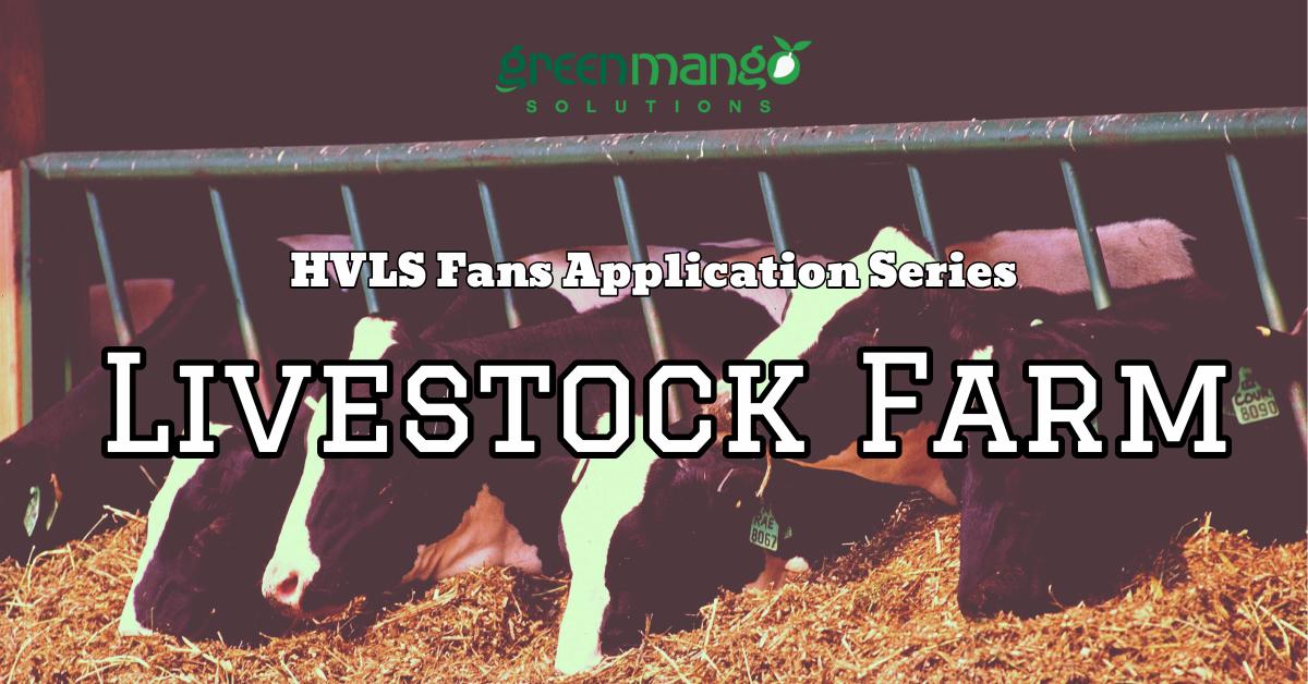 hvls fans livestock farm cow feeding grass